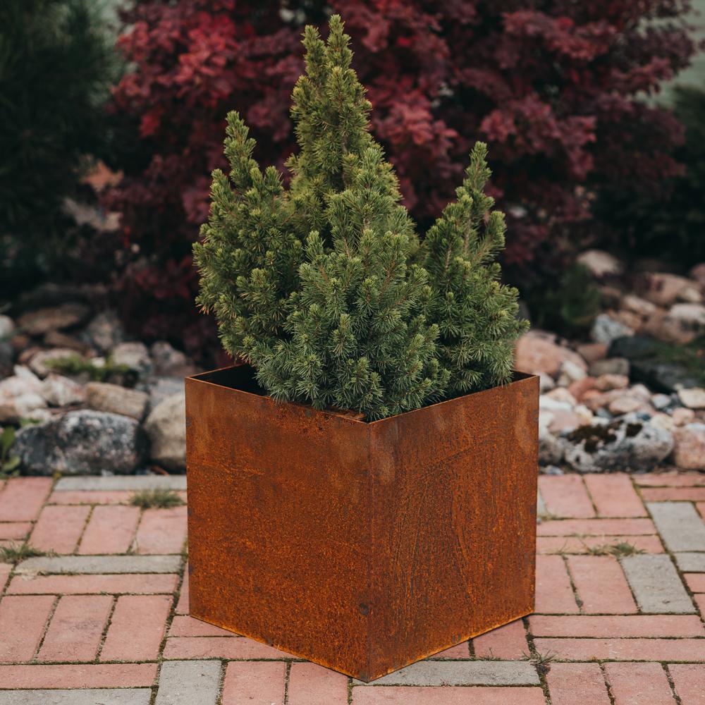 Fiora S: plantekasse i Cor-Ten stål (Størrelse: 30 x 30 x 30 cm)